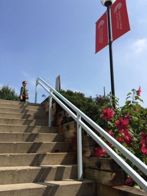 Landscaped stairs leading to CCAD's Packard Library