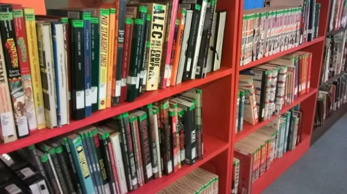 The library has begun to seriously collect graphic novels recently.