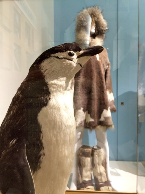 Little Mo the Penguin